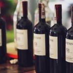 Dia dos Pais: vinhos para presentear e brindar esse dia especial!