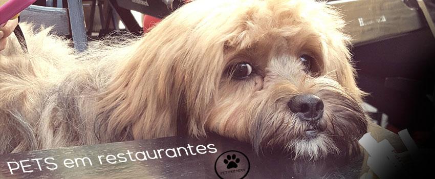 Blog da Farofa – Pets e restaurantes, uma relação que pode dar certo.