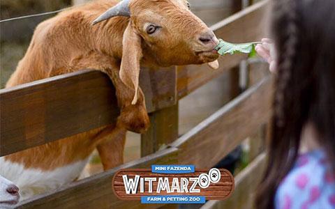 Mini Fazenda Witmarzoo