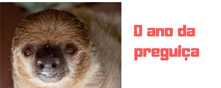 O ano da preguiça